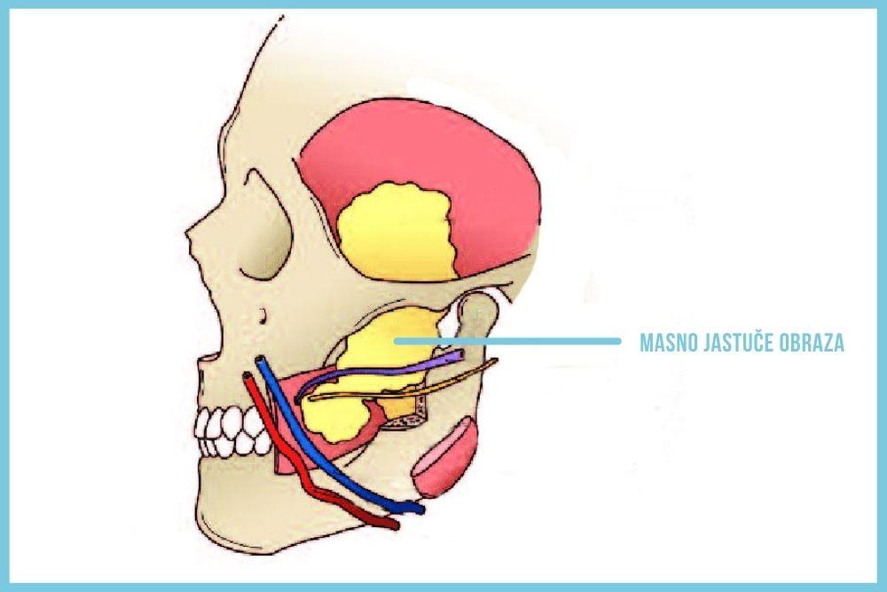 uklanjanje masnog jastuceta obraza beograd centar 2a